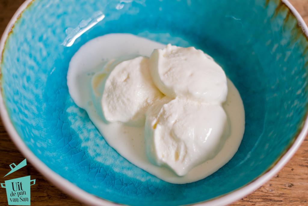 Yoghurt ijs-met logo